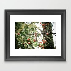 Caught in the Act Framed Art Print
