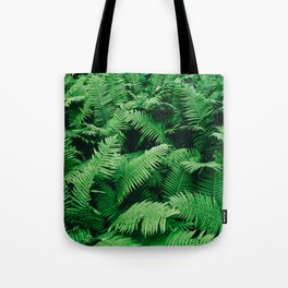 Into the rainforest Tote Bag