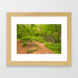 Sun Kissed Forest Castle Ruins Framed Art Print