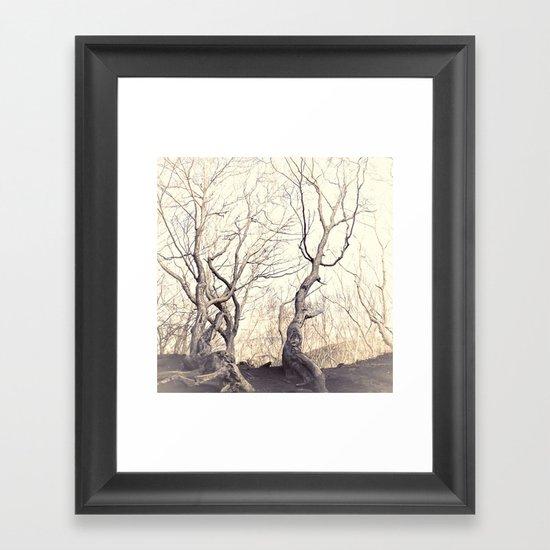 High and dry Framed Art Print