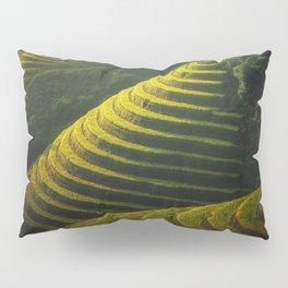 Rice Terraces Pillow Sham