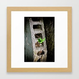 Nature finds a way. Framed Art Print