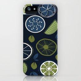 Fruit Slices iPhone Case
