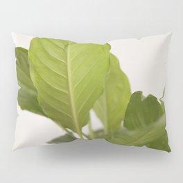 Hojas verdes (2) (green leafs) Pillow Sham