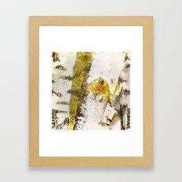 Rustic Gold Knot Close-Up Birch Framed Art Print