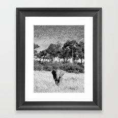 Elephant in Maasai Mara Framed Art Print