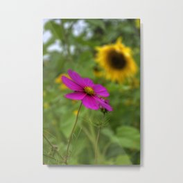 Purple and Yellow WIldflowers Metal Print