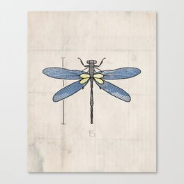 VOL25 Insects Series- Dragonfly Canvas Print