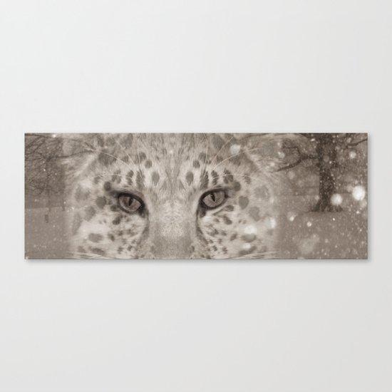 Snow Leopard night Canvas Print