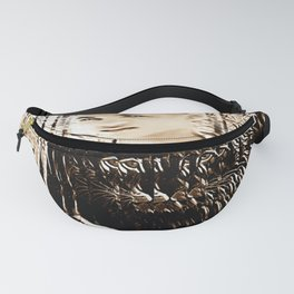 Youth of Tomorrow: Prince Titian 01-02 Fanny Pack