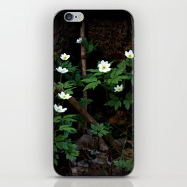 Anemone Nemorosa iPhone Skin