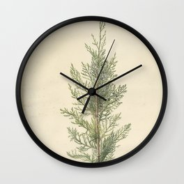 Botanical Juniper Wall Clock