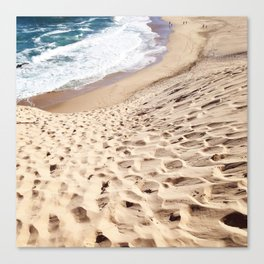 African Dune Beach Canvas Print