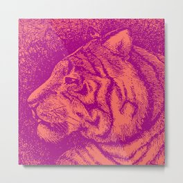 Living Color - Tiger Minimalist Graphic Coral Metal Print
