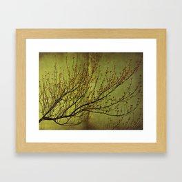A Heart of Gold Framed Art Print