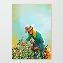 Harvest July Canvas Print