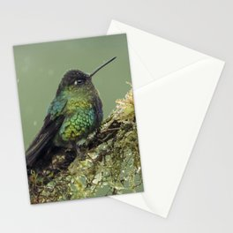 Fiery Throated Hummingbird perched in the Costa Rican Rainforest Stationery Cards