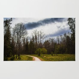 road in a forest Rug