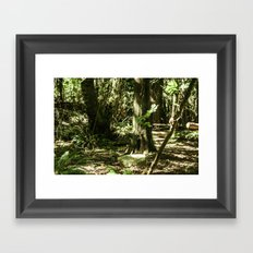 Coat of Green Framed Art Print