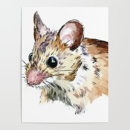 Little Brown Mouse Poster