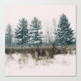 Wonderland #1 Canvas Print