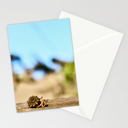 Journey of the Hermit Crab Stationery Cards