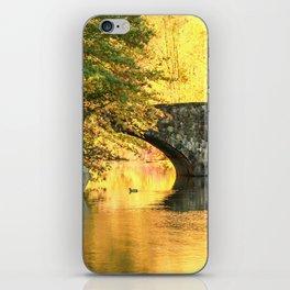Clove Lake Park iPhone Skin
