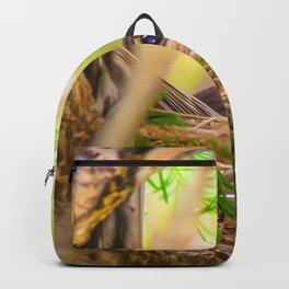 Baby Robin Bird Backpack