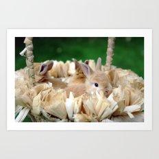 Bunnies In A Basket... Art Print