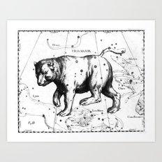 Vintage Ursa Major Art Print
