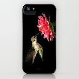 Hummingbird V iPhone Case