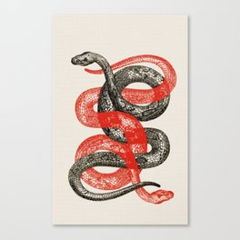 Twin Snakes Canvas Print