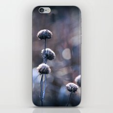Copper Field Evening Frost iPhone & iPod Skin
