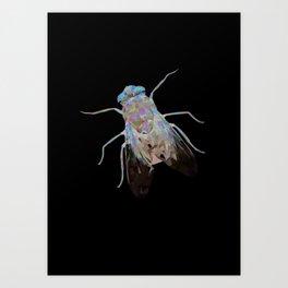 Animal Slang - Fly Art Print