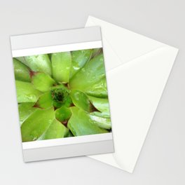 Hen Stationery Cards