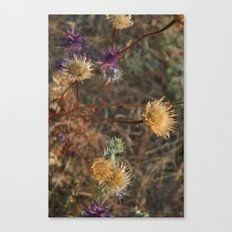 The Last Color of Fall Canvas Print