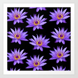 Lotus On Black Art Print