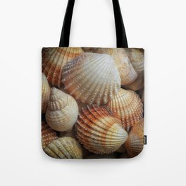 A collection of sea shells Tote Bag