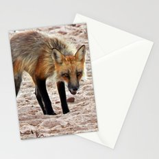 Fox on the Beach Stationery Cards