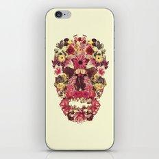 Echinacea Linaria Silene iPhone & iPod Skin