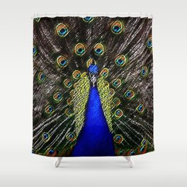 Jeweled Peacock Portrait Painting by Jeanpaul Ferro Shower Curtain