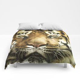 Face of Tiger Comforters