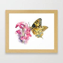Butterfly#5 Framed Art Print