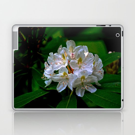 Rhododendron Bloom at Falling Water Laptop & iPad Skin