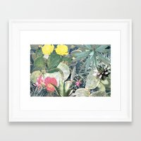 cacti Framed Art Prints featuring CACTI by Beth Hoeckel