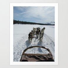 dogsledding in Northern California Art Print