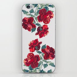 Red Roses iPhone Skin