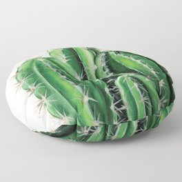 Cactus Acyrlic Painting Floor Pillow