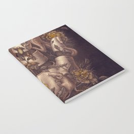 Disperse Notebook