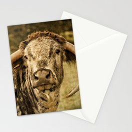 Vintage Longhorn Cattle Stationery Cards